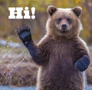 Saying Hi