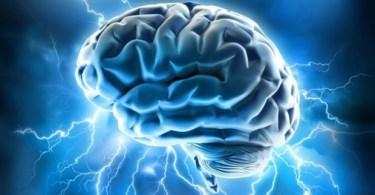 brain supplements / nootropics