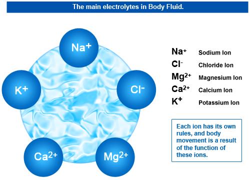 electrolyte_fi