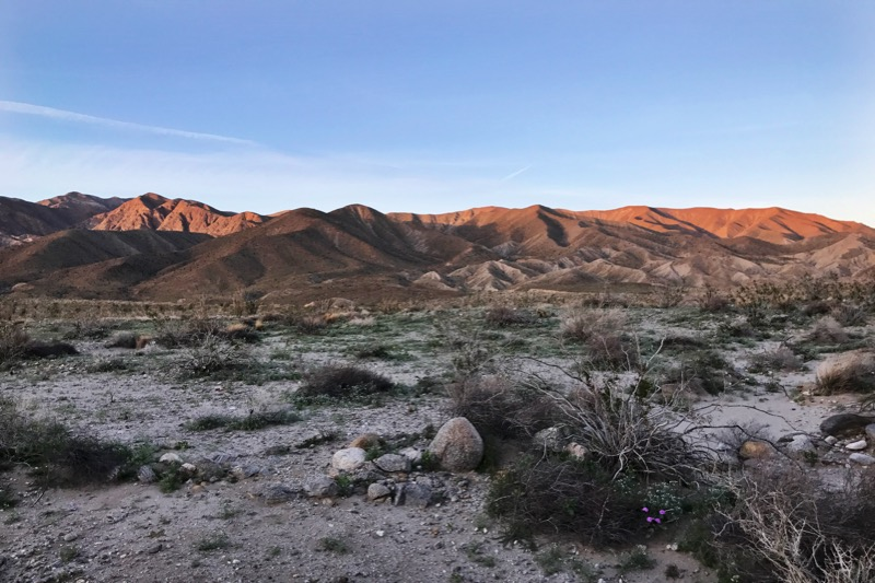 View From Campsite In The Palo Verde Wash