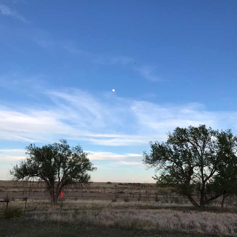 Full Moon Rising Over Buffalo Lake NWR