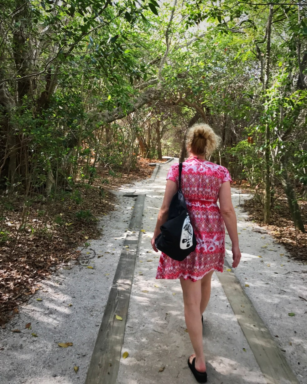 Walking Through The Mangrove Forest To Get To The Beach