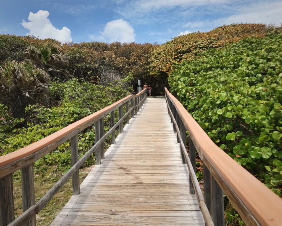 Ocean Ridge Hammock Park Beach Access