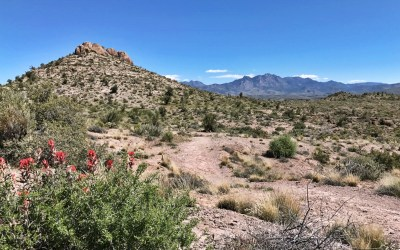 Cerbat Foothills Recreation Area