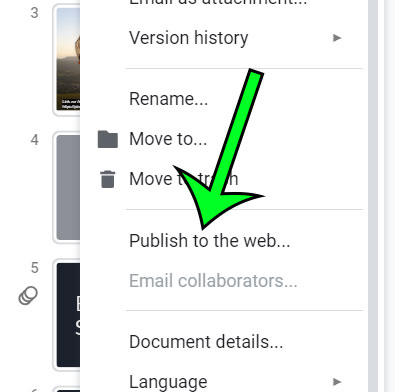 select the publish to the web option