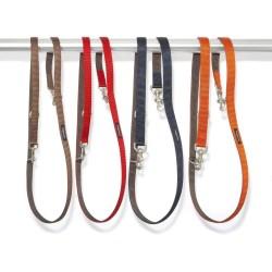 Nylon Metropolitan Leash and Collar