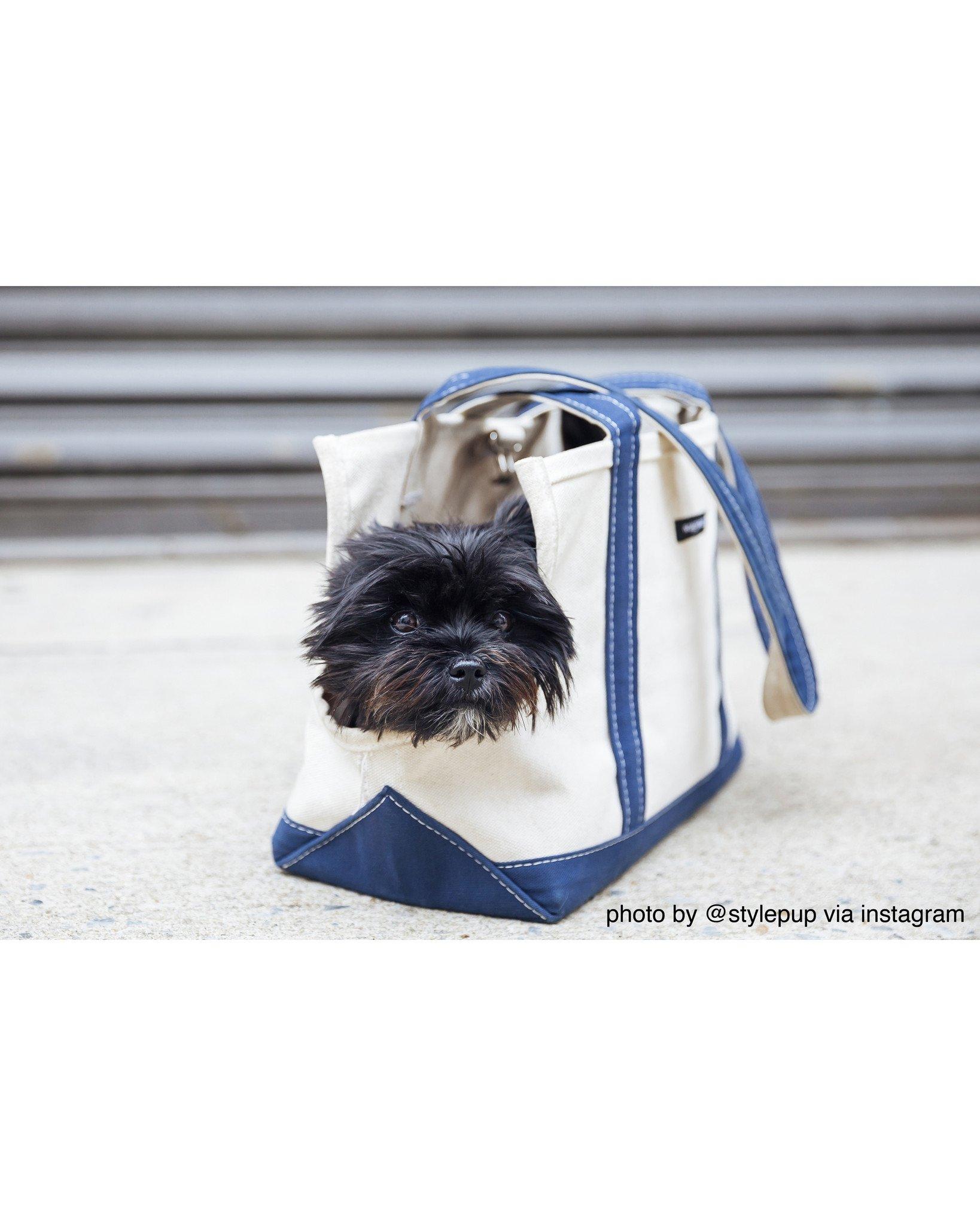 Wagwear Boat Canvas Dog Carrier