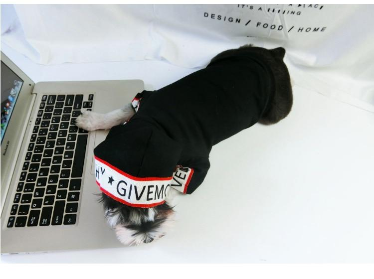 Pawvenchy Dog Hoodie