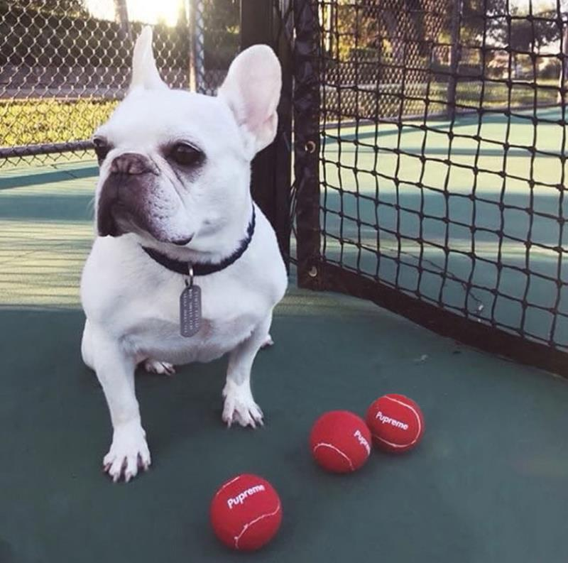 Pupreme Tennis Balls