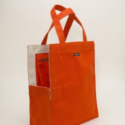Shopping Bag Dog Carrier