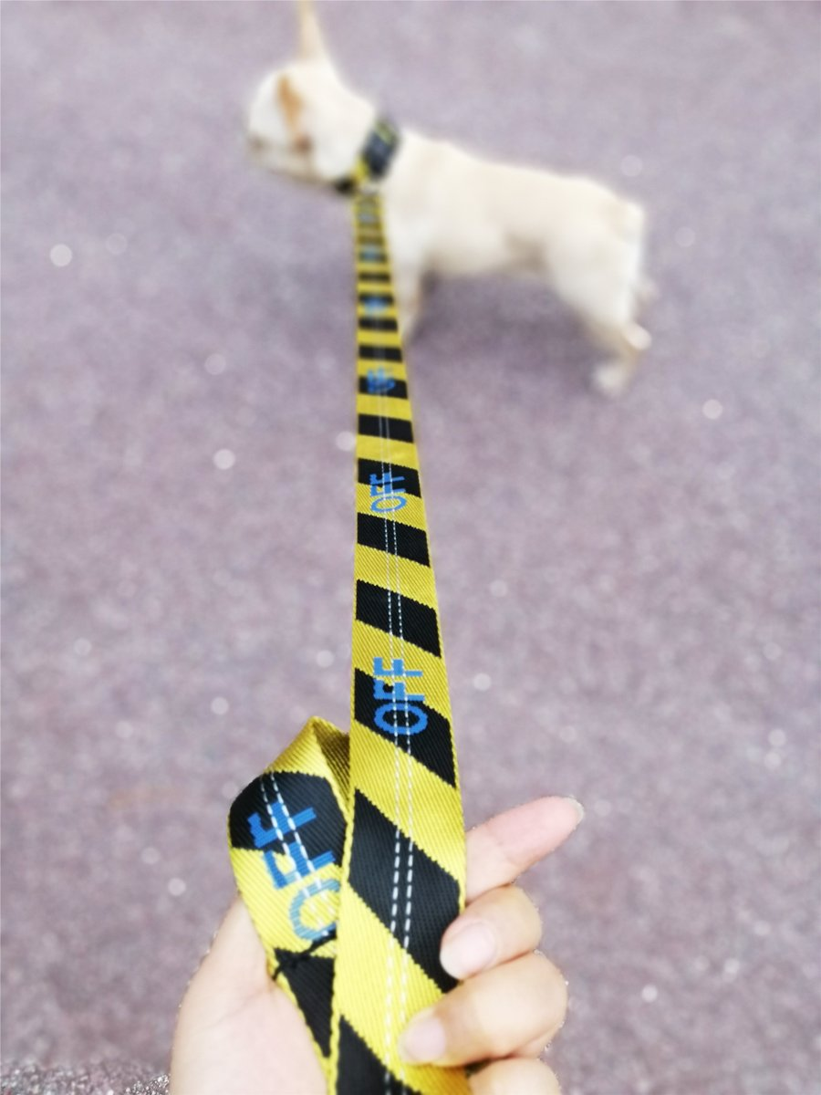 Woof-White Striped Collar & Leash