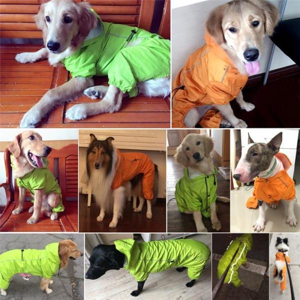Rain Rebel Dog Raincoat - Orange