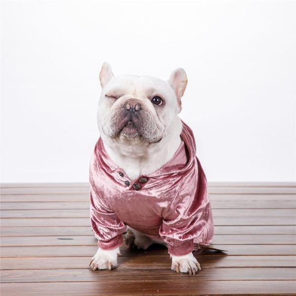 Velvet Dog Hoodie