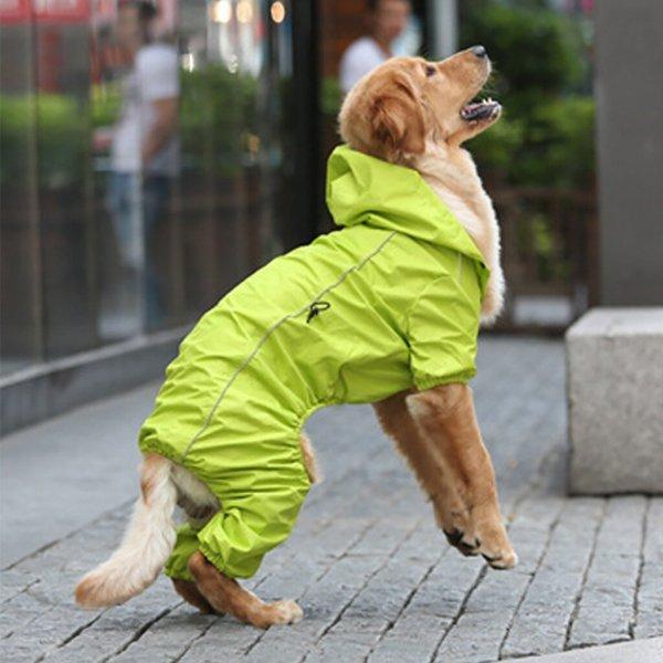Rain Rebel Dog Coat - Green