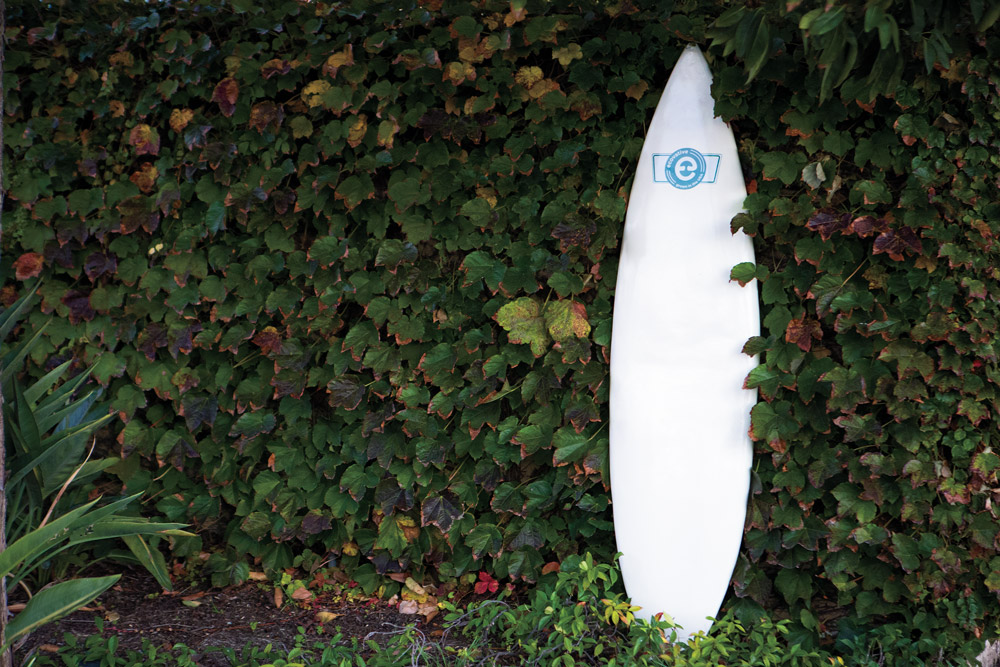 The mushroom surfboard from Ecovative, a New York-based packaging company. Photo: Lowe-White