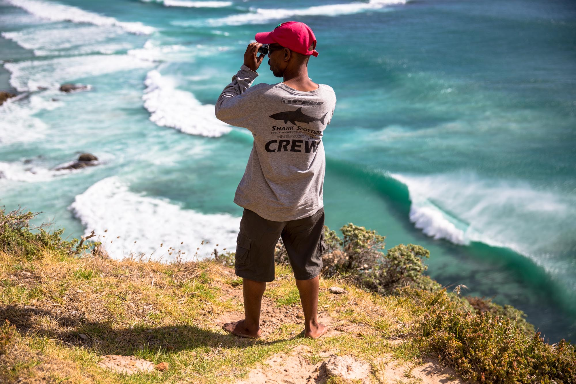 A Shark Spotter in Cape Town, scanning the lineup for men in grey suits