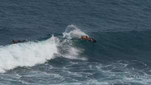Backside Cutback