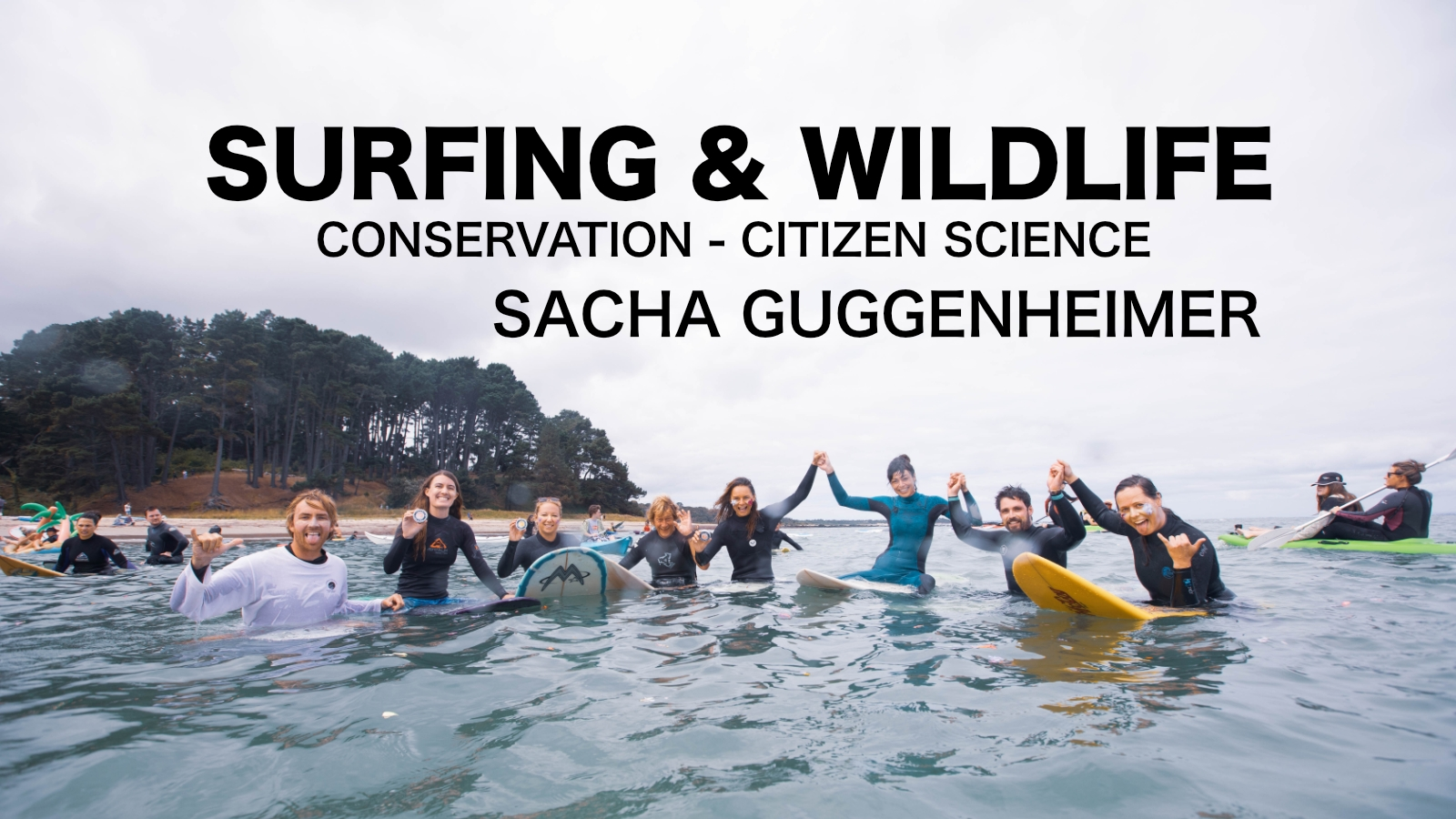 Surfing and wildlife: Supporting conservation through citizen science