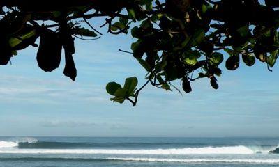 South Sumatra | Thank You Surf Travel Guru