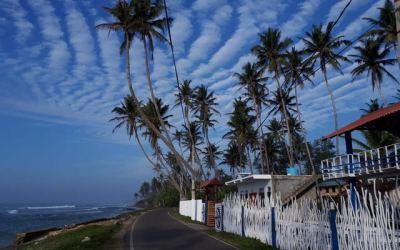 Sri Lanka | King Family | Review