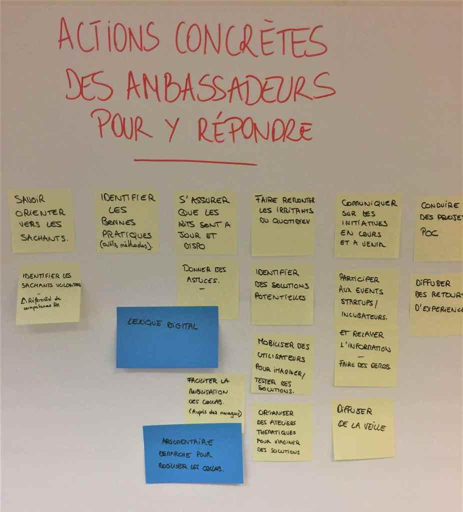 actions-acculturation-ambassadeurs-digitaux