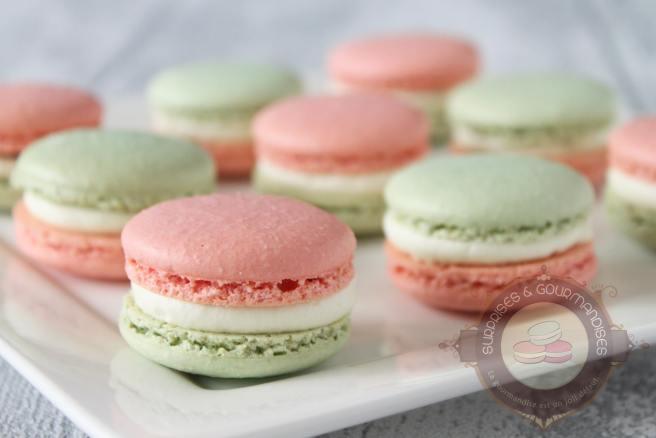 macaron-menthe-framboise2