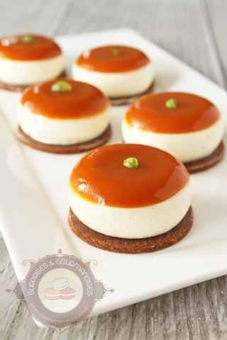 entremets-abricot-vanille-orange2