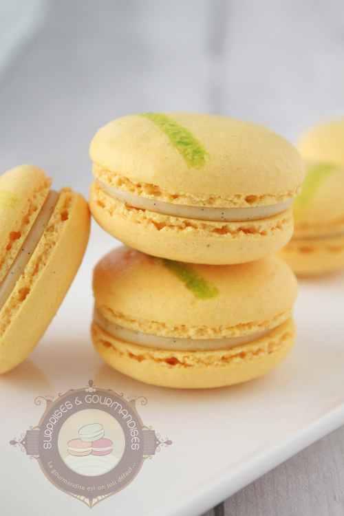 macaron-kalamansi-vanille-citron-vert06