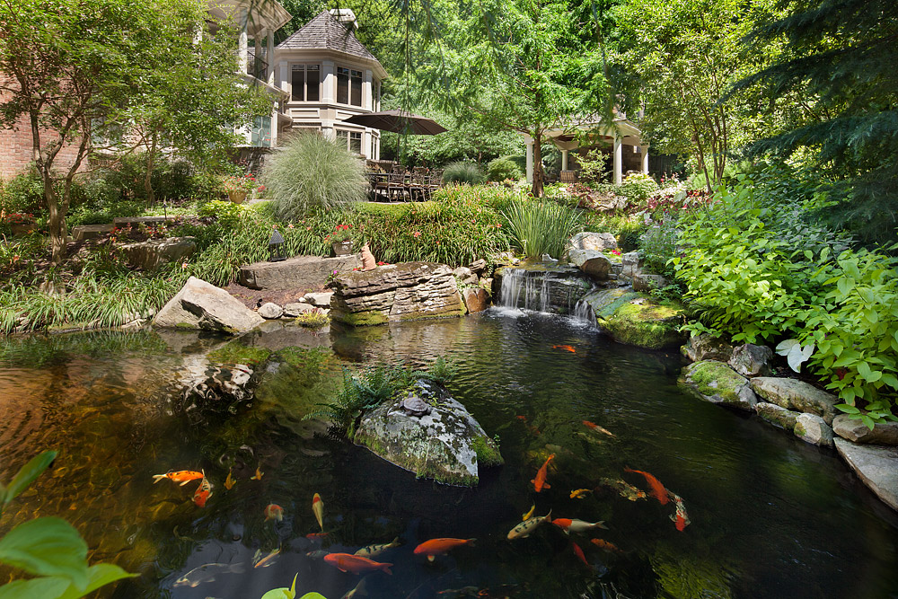 Koi Pond Design And Construction