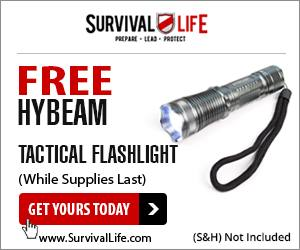 HYBEAM FLASHLIGHT FREE!