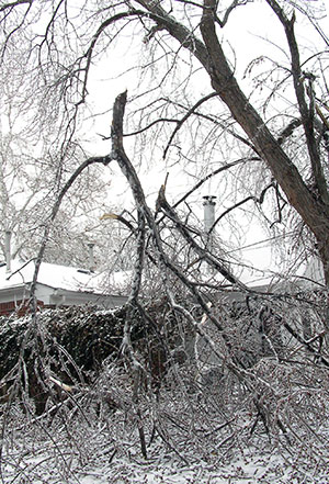 2005 Wichita ice storm