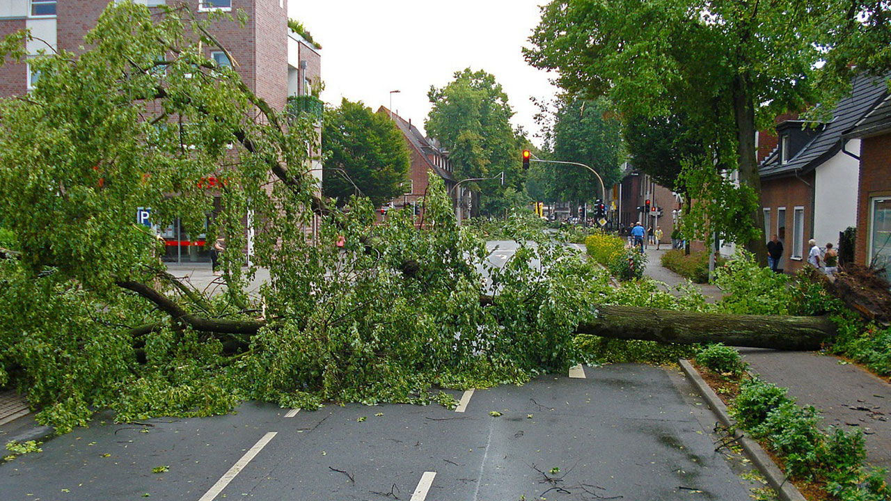 urban damage