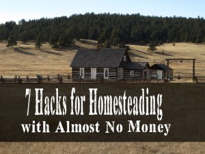 7 Hacks for Homesteading with Almost No Money