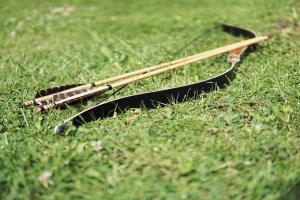 arrow Survival Bow