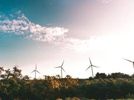 5 Arguments Against Renewable Energy Use – And How to Debunk Them