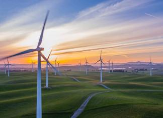 Staying Informed: Current Environmental Issues to Look Out For In 2019