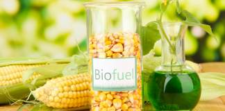 What Are Biofuels and Why Should I Use Them In My Car?