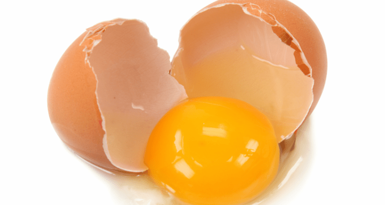 Reasons why eggs are the best survival food