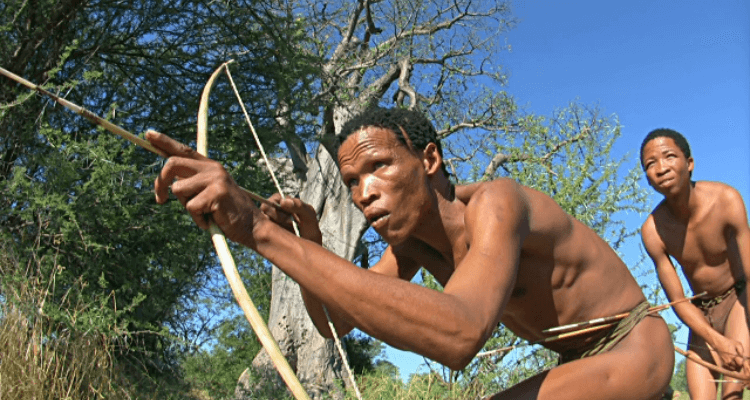 San people like to use a short survival bow