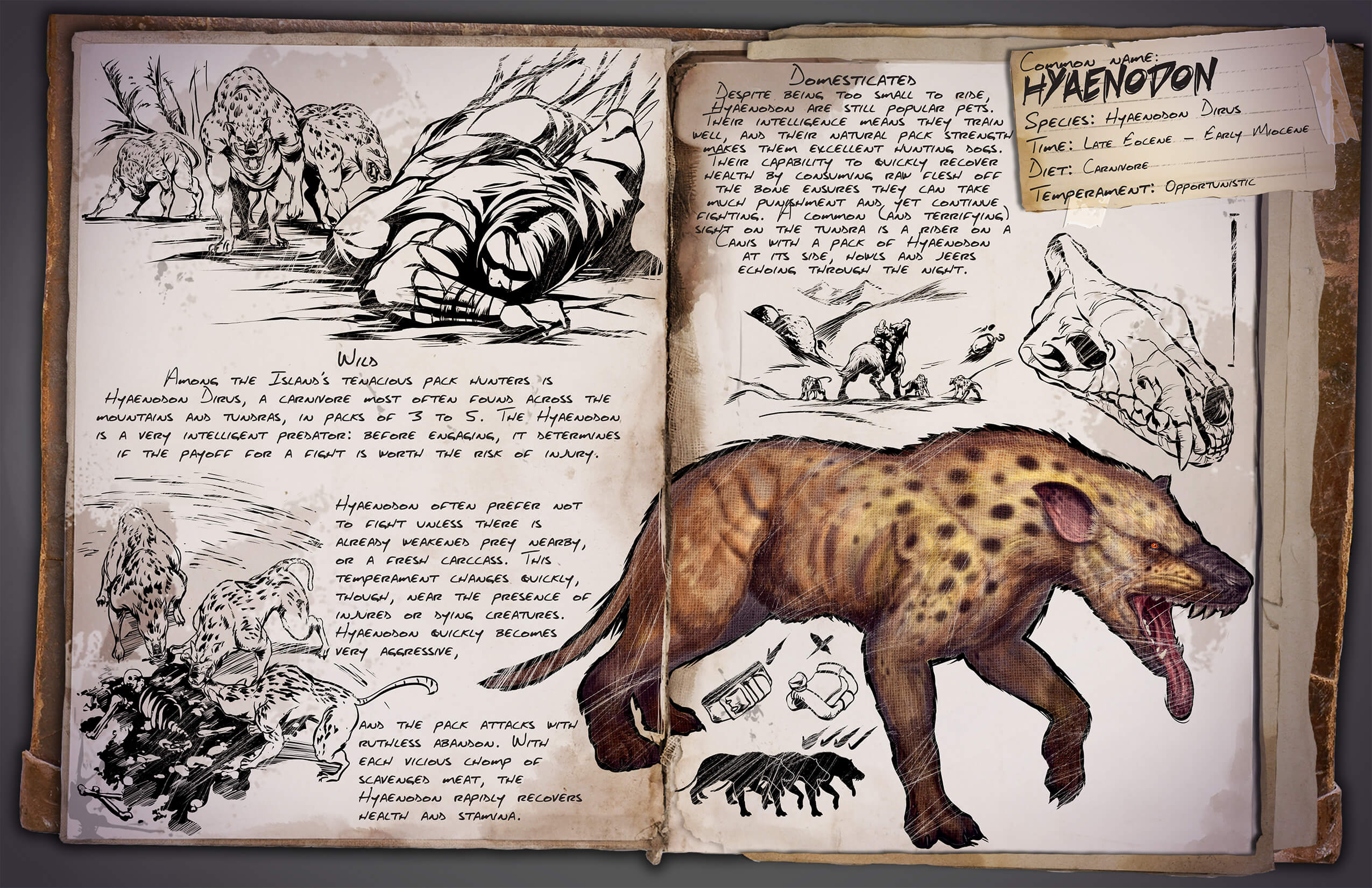 Hyaenodon Survive ARK