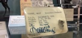 Walt Disney ID Card