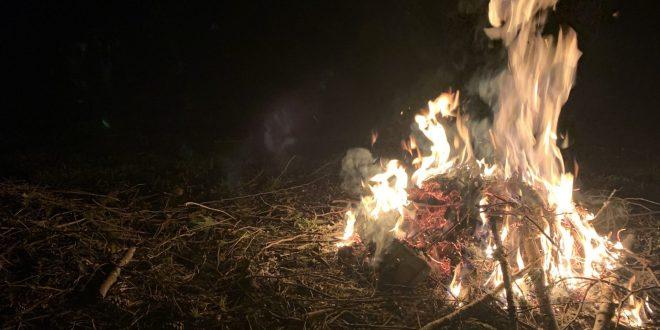 4K Campfire video