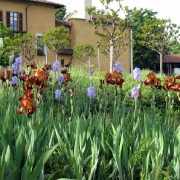 07-villa-lonati-fioriture-primaverili