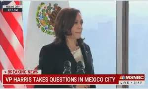 """CLOWN SHOW: Leftist Hack Who Told Kamala Harris """"I Voted for You"""" at Guatemala Presser — Is a Fake Reporter and Lied About Working at Hispanic Channel"""