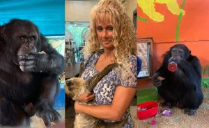 Brave Woman Refuses to Hand Over Beloved Chimps to 'Animal Rights' Group PETA, Says She Will Defy Court Order — 'They're Not Getting Them'