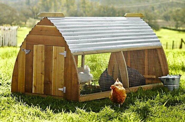 ballard-chicken-coop