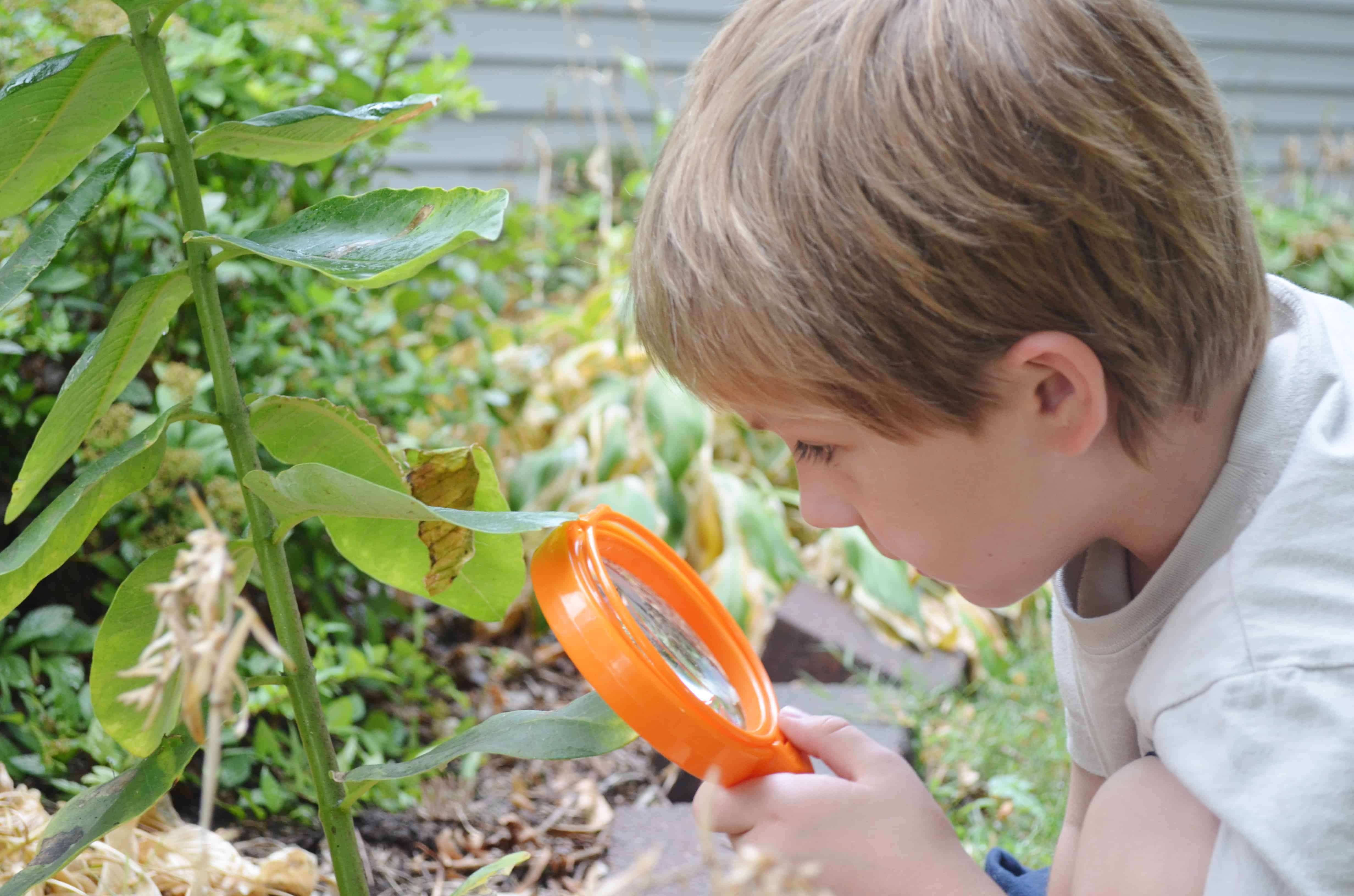 Primary Science Jumbo Magnifiers Review By Learning Resources