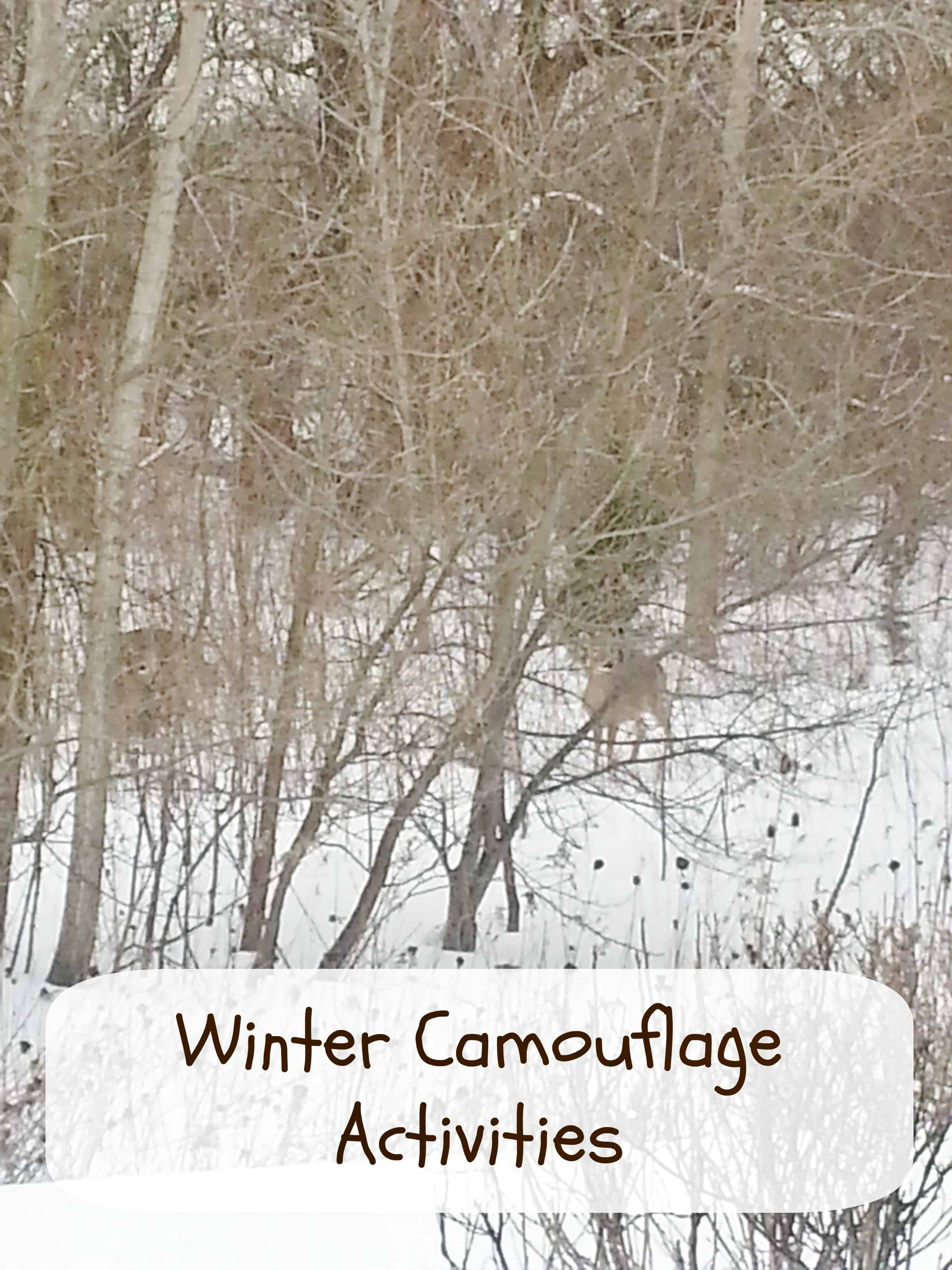 Winter Camouflage Activities For Kids