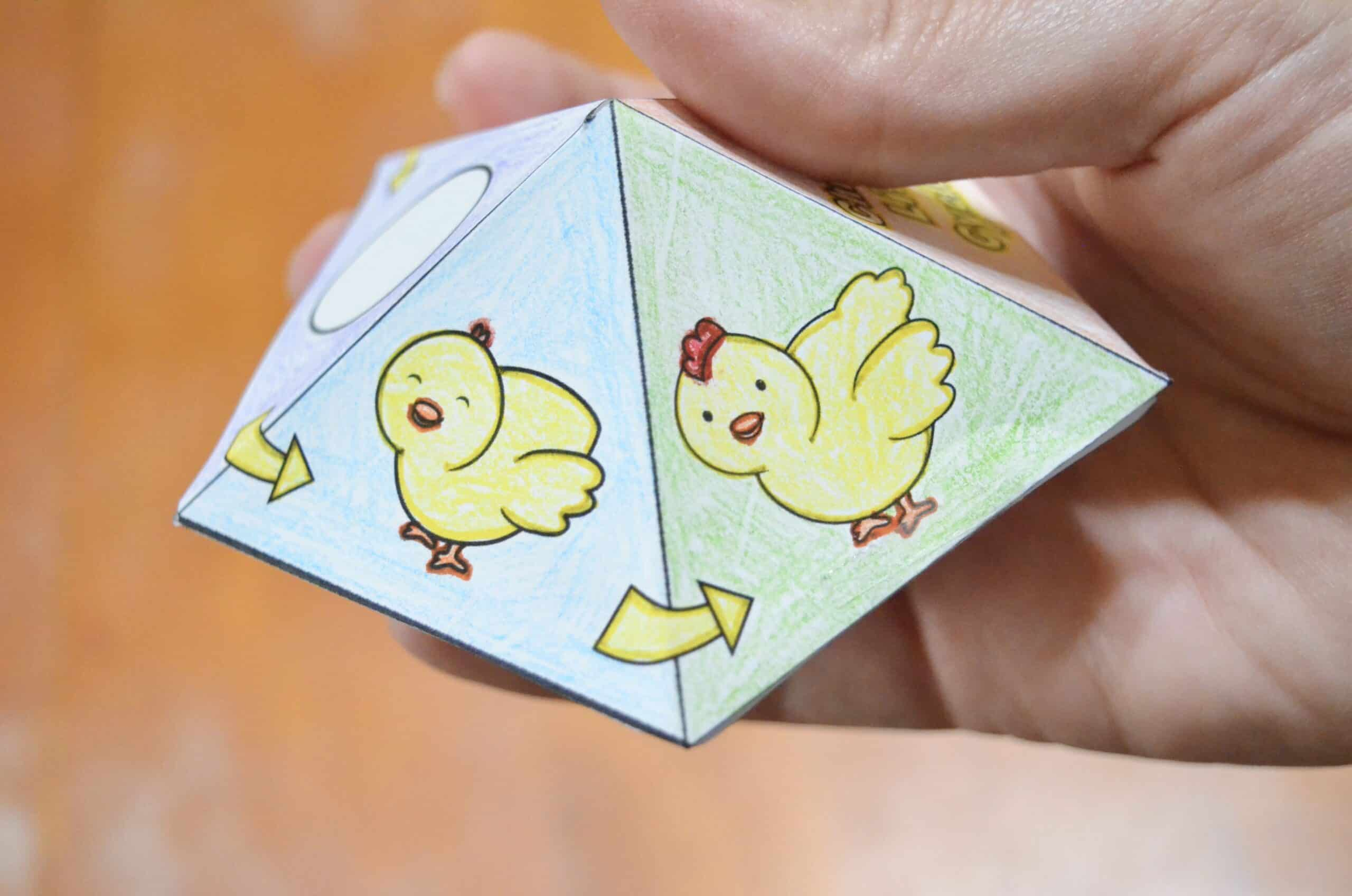 Free Printable Chicken Life Cycle Interactive Spinner Top Toy