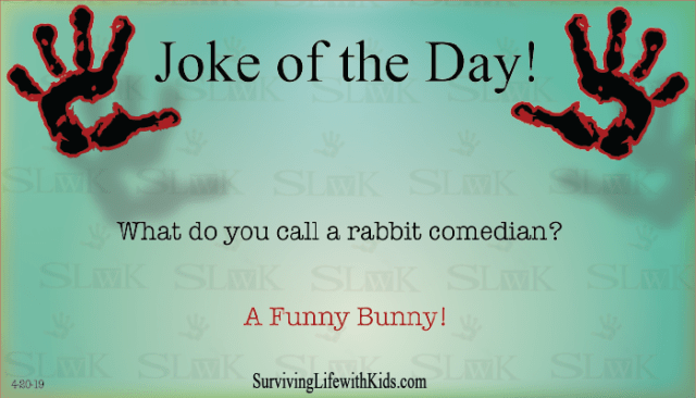 Daily Joke: What Do You Call A Rabbit Comedian?